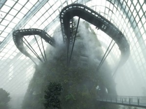 Cooled-Conservatories-Gardens-by-the-Bay-Craig-Sheppard-537x403