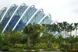 singapore-cloud-forest-greenhouse-gardens-by-the-bay